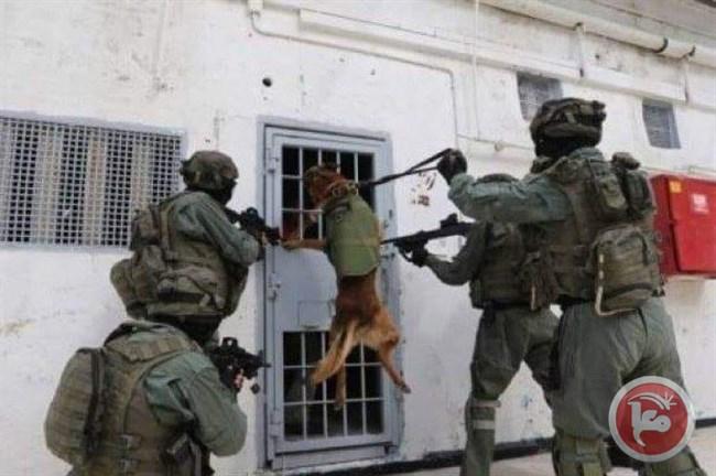assaut_prison_chien-2.jpg