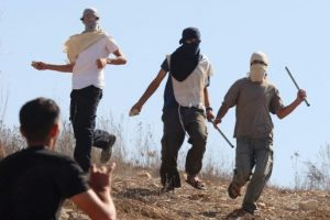 Attaques de colons durant la récolte des olives (Vidéo)