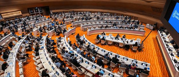 L'OMS condamne les violations des droits de la santé par Israël