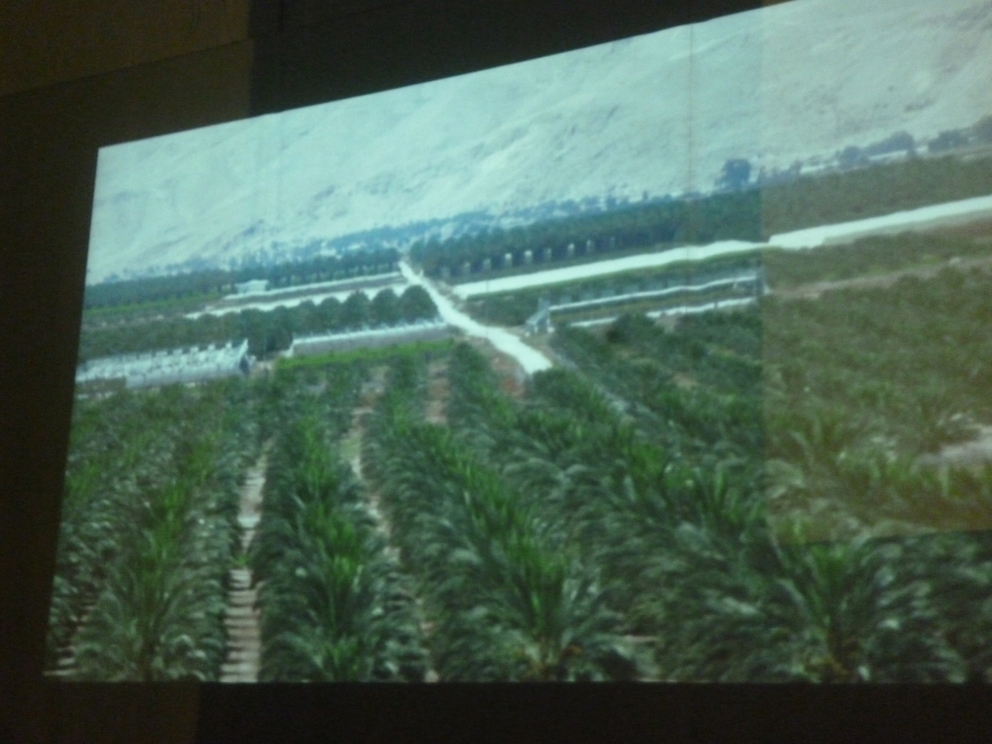 Vallée du Jourdain : nouveau pipeline de dérivation des eaux palestiniennes