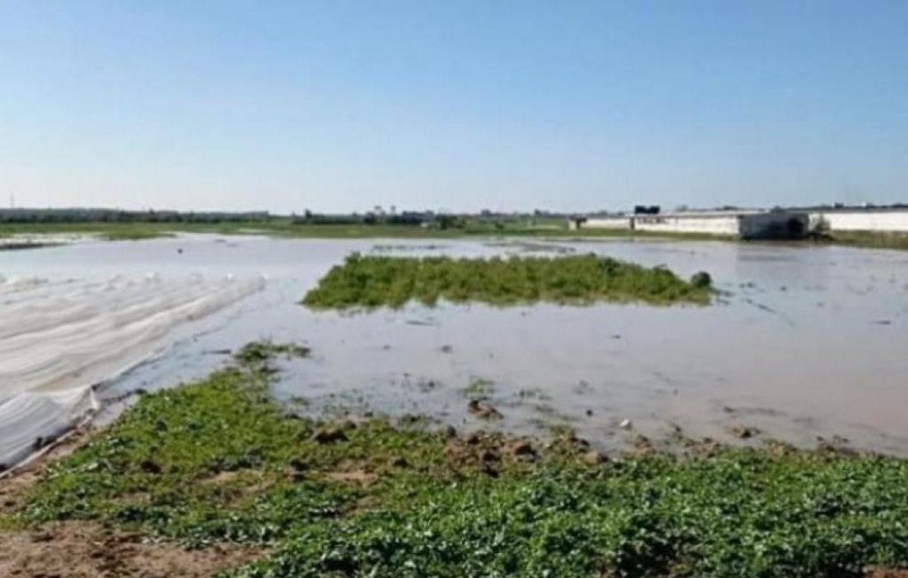 Israël inonde les terres agricoles de Gaza !