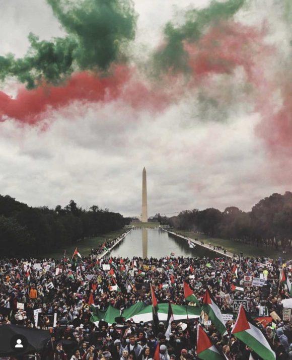 L'incroyable photo de la manif pour la Palestine à Washington !