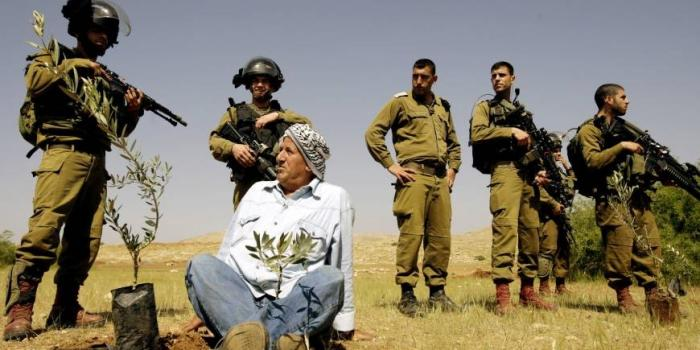 Les agriculteurs palestiniens empêchés d'accéder à leurs champs près de Béthléem