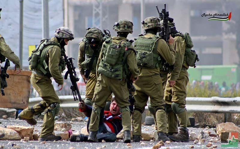 La Palestine au jour le jour: Semaine du 17 au 23 juin