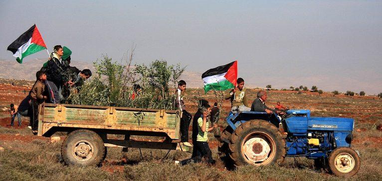 Le CETIM dénonce la répression contre les paysans palestiniens