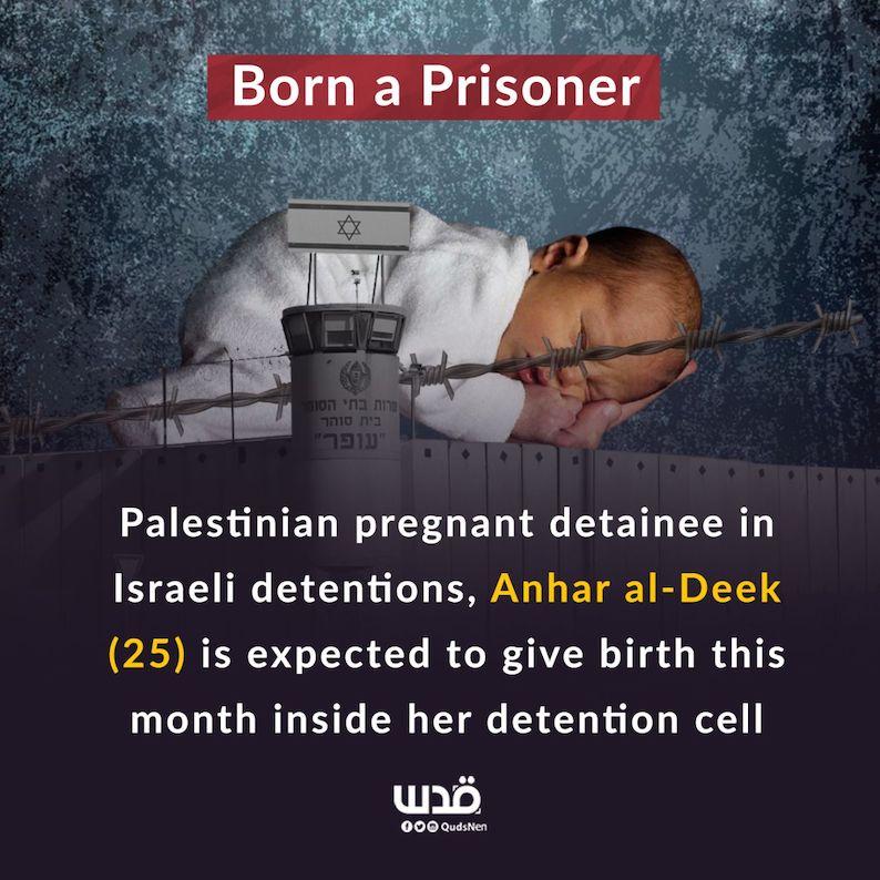 Libérez Anhar Al-Deek sur le point d'accoucher dans une prison israélienne