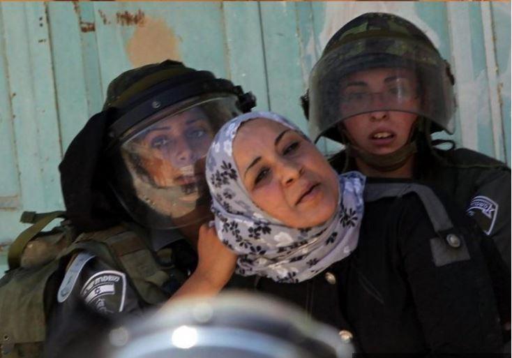Palestine : Bilan des crimes et violations commis par Israël du 9 au 15 septembre
