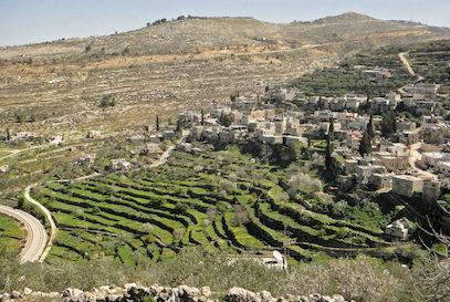 Un incendie dans la forêt de Jérusalem dévoile le Palestine d'il y a 600 ans !